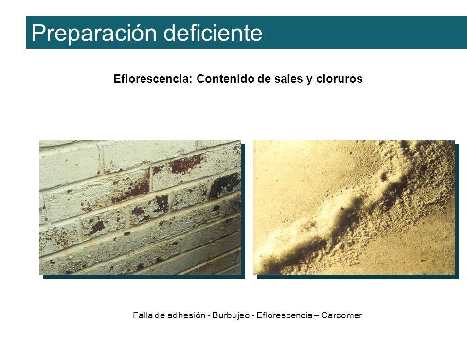 Eflorescencia: Contenido de sales y cloruros