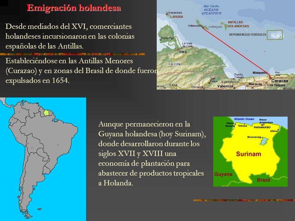 Emigración holandesaDesde mediados del XVI, comerciantes holandeses incursionaron en las colonias españolas de las Antillas.