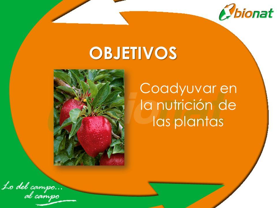 Coadyuvar en la nutrición de las plantas