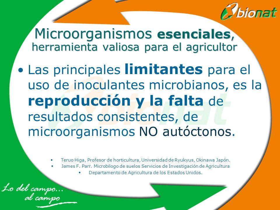 Microorganismos esenciales, herramienta valiosa para el agricultor