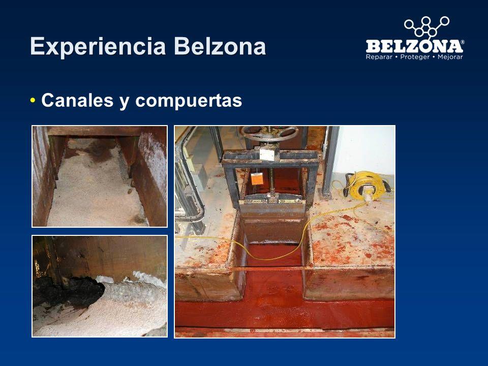 Experiencia Belzona Canales y compuertas British Energy – Heysham