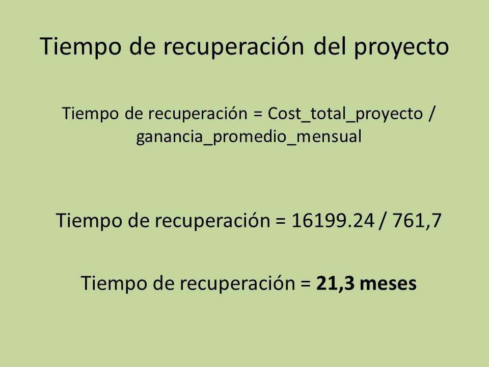 Tiempo de recuperación del proyecto