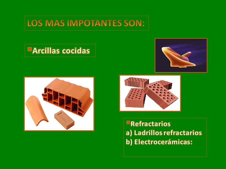 LOS MAS IMPOTANTES SON:
