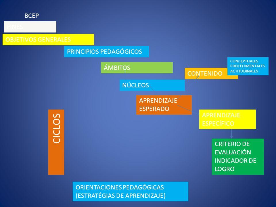 CICLOS BCEP FINES OBJETIVOS GENERALES PRINCIPIOS PEDAGÓGICOS ÁMBITOS
