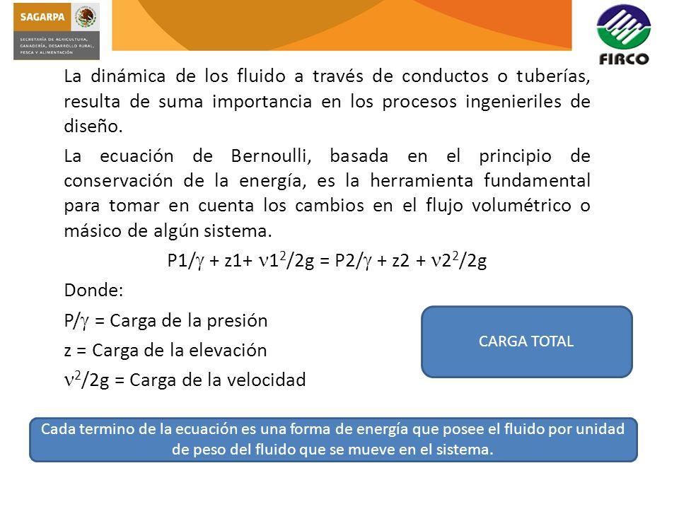 P/ = Carga de la presión z = Carga de la elevación
