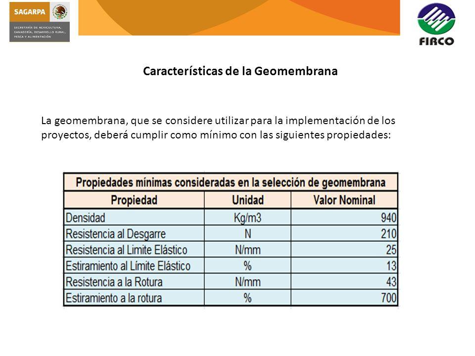 Características de la Geomembrana