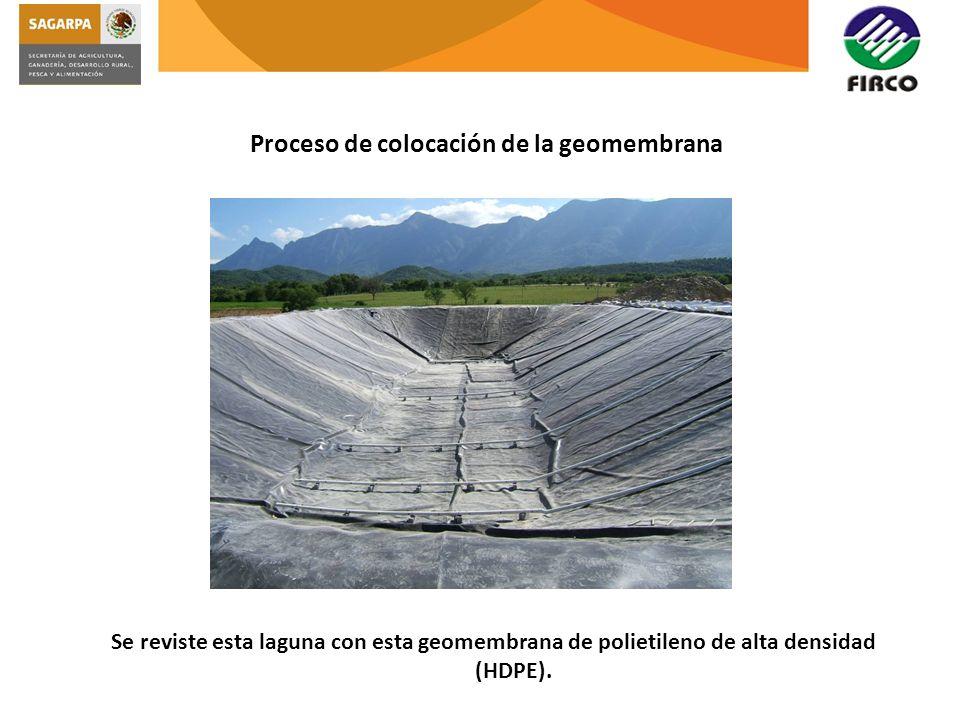 Proceso de colocación de la geomembrana