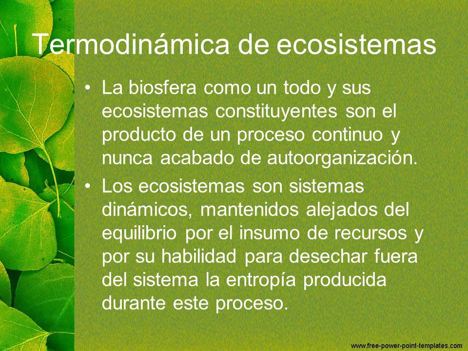 Termodinámica de ecosistemas