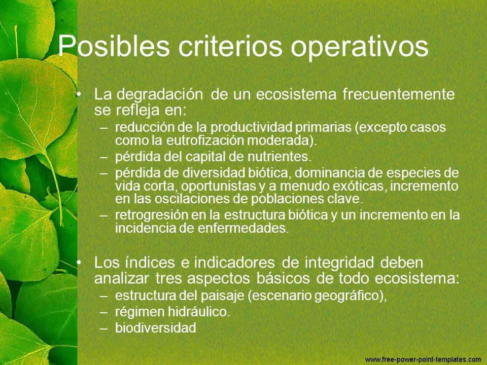 Posibles criterios operativos