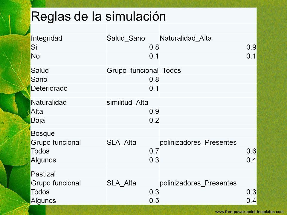 Reglas de la simulación