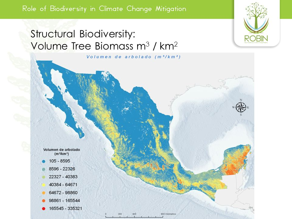 Structural Biodiversity: Volume Tree Biomass m3 / km2