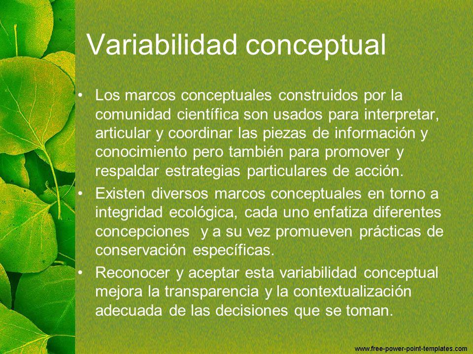 Variabilidad conceptual