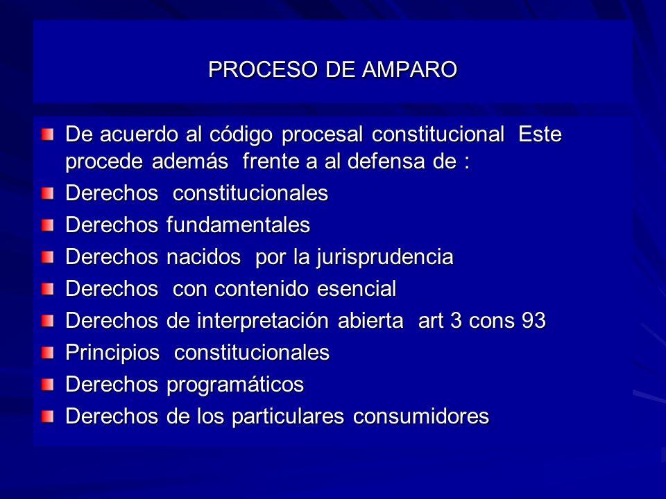 PROCESO DE AMPARO De acuerdo al código procesal constitucional Este procede además frente a al defensa de :