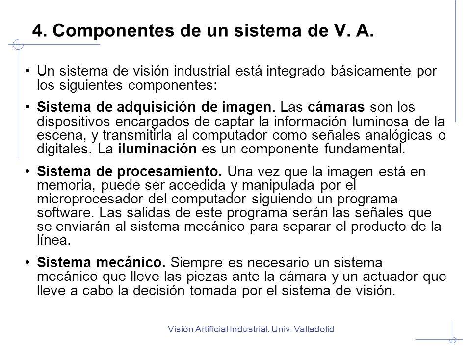 4. Componentes de un sistema de V. A.
