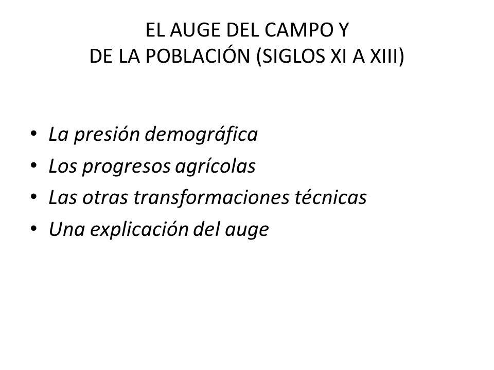 EL AUGE DEL CAMPO Y DE LA POBLACIÓN (SIGLOS XI A XIII)
