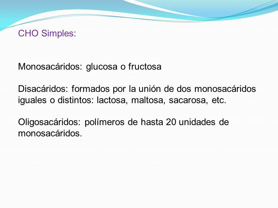 CHO Simples: Monosacáridos: glucosa o fructosa.