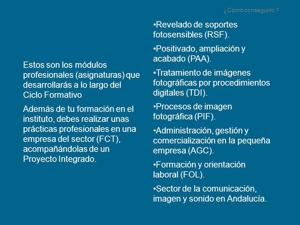 Revelado de soportes fotosensibles (RSF).