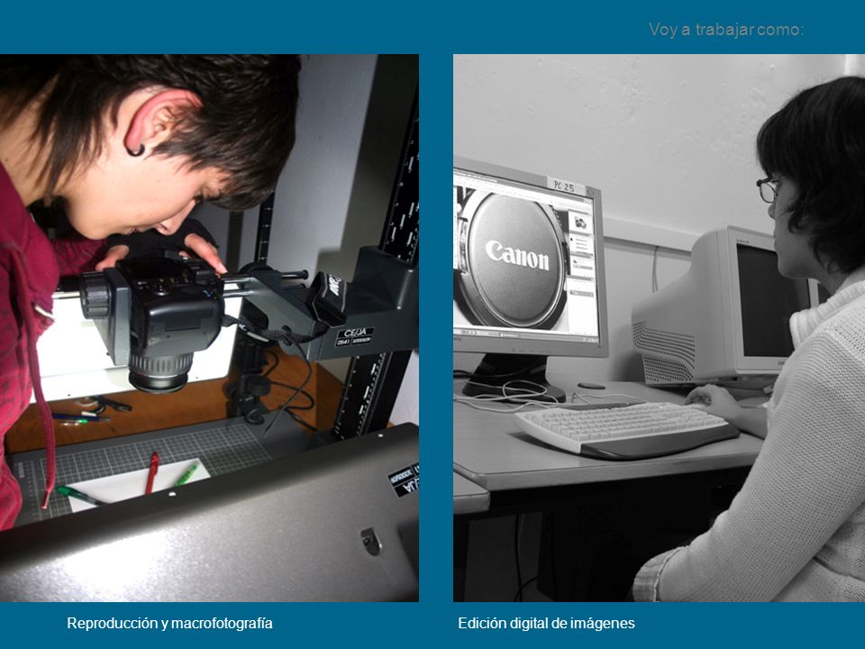 Voy a trabajar como: Reproducción y macrofotografía