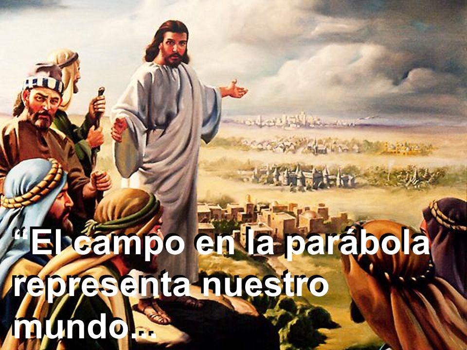 El campo en la parábola representa nuestro mundo...