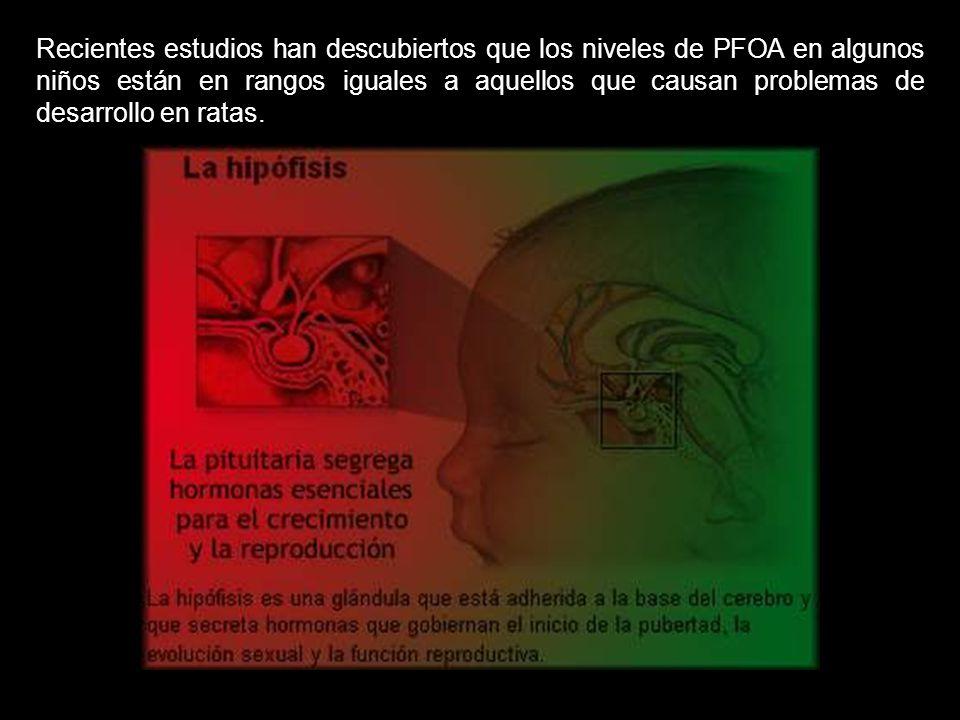 Recientes estudios han descubiertos que los niveles de PFOA en algunos niños están en rangos iguales a aquellos que causan problemas de desarrollo en ratas.
