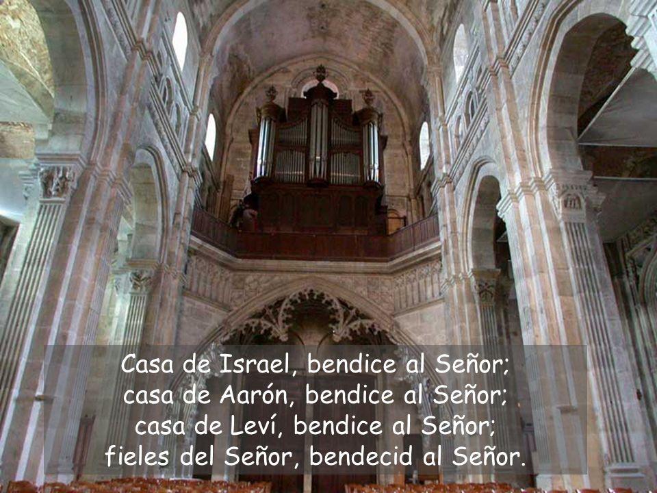 Casa de Israel, bendice al Señor; casa de Aarón, bendice al Señor; casa de Leví, bendice al Señor; fieles del Señor, bendecid al Señor.