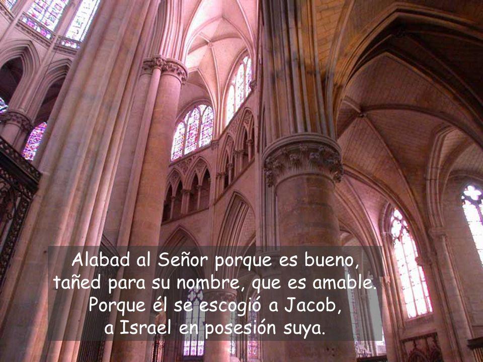 Alabad al Señor porque es bueno, tañed para su nombre, que es amable