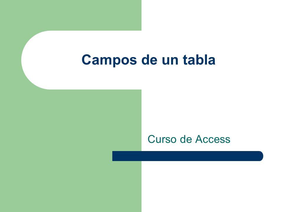 Campos de un tabla Curso de Access
