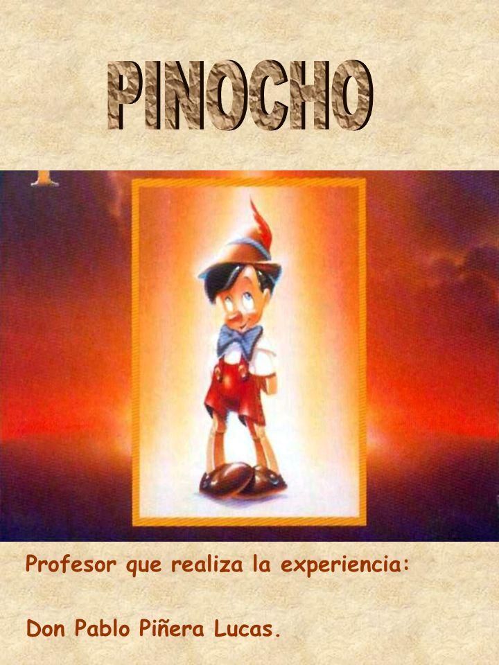 PINOCHO Profesor que realiza la experiencia: Don Pablo Piñera Lucas.