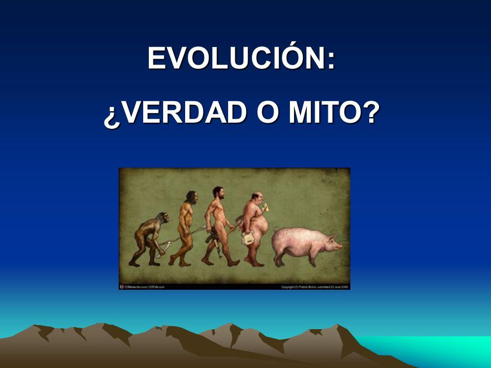 EVOLUCIÓN: ¿VERDAD O MITO