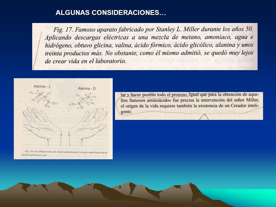 ALGUNAS CONSIDERACIONES…