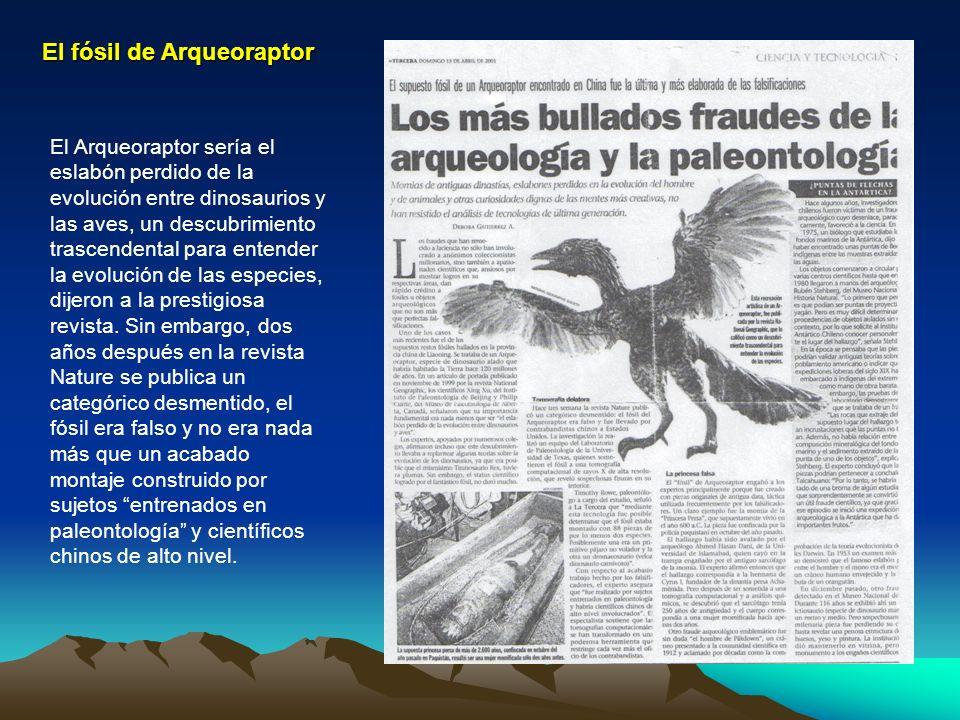 El fósil de Arqueoraptor