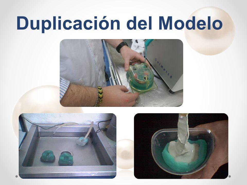 Duplicación del Modelo