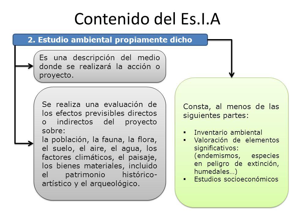 2. Estudio ambiental propiamente dicho