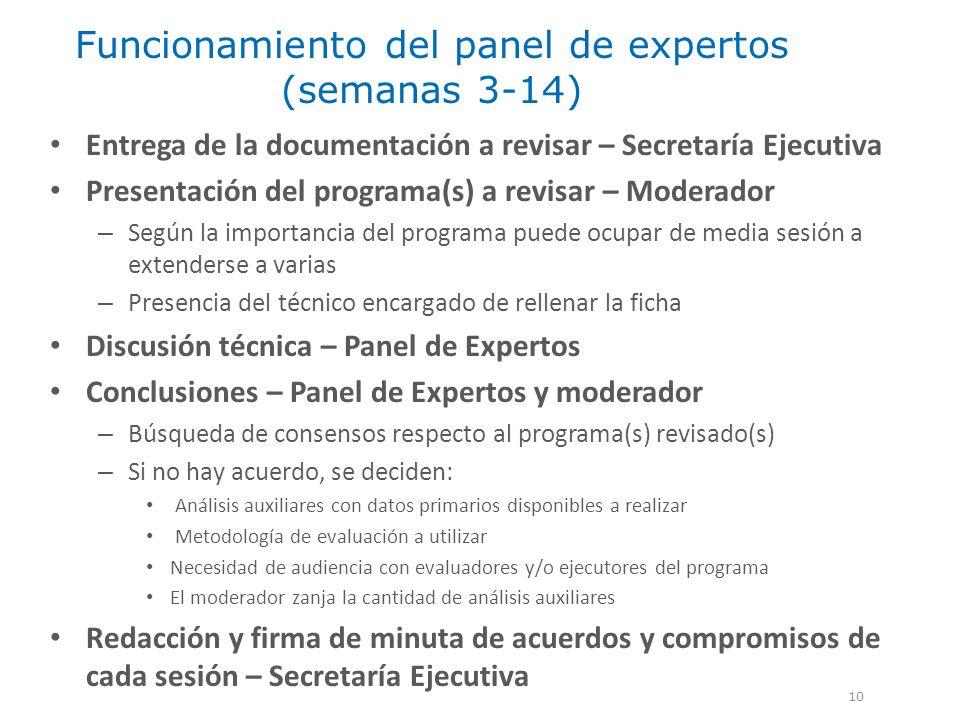 Funcionamiento del panel de expertos (semanas 3-14)