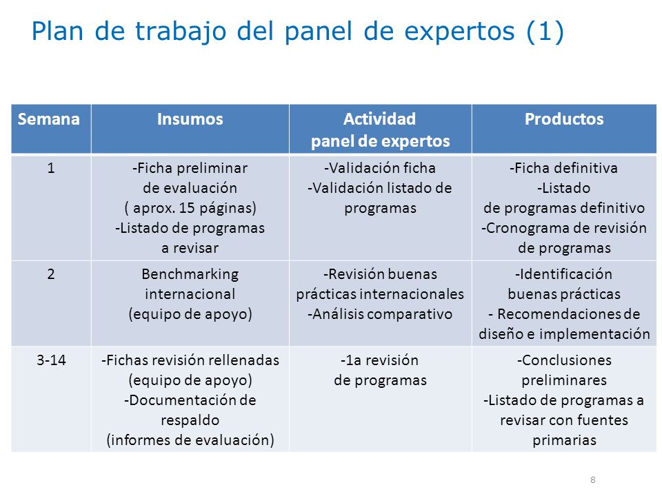 Plan de trabajo del panel de expertos (1)