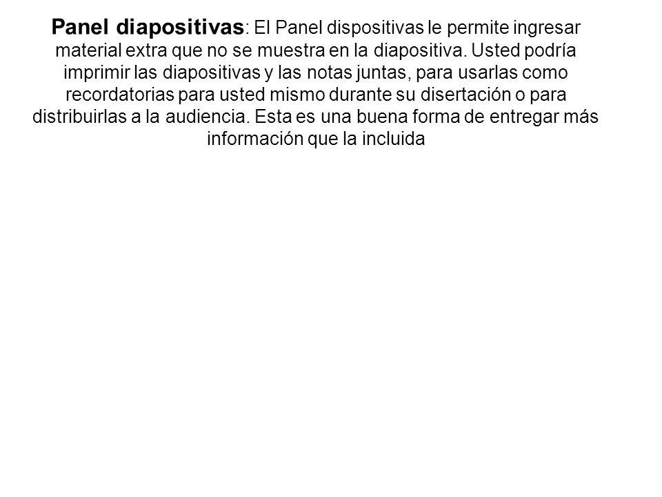 Panel diapositivas: El Panel dispositivas le permite ingresar material extra que no se muestra en la diapositiva.