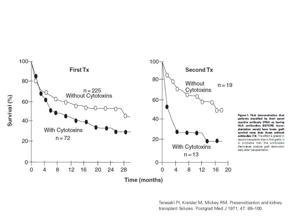 Proof that a humoral test for sensitization is effective was first provided by survival curves in patients classified according to the presence or absence of cytotoxic antibodies (13) (Figure 1).