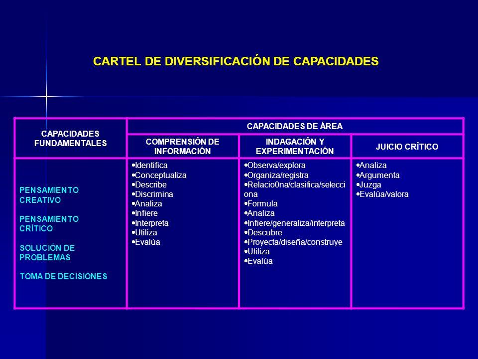 CARTEL DE DIVERSIFICACIÓN DE CAPACIDADES