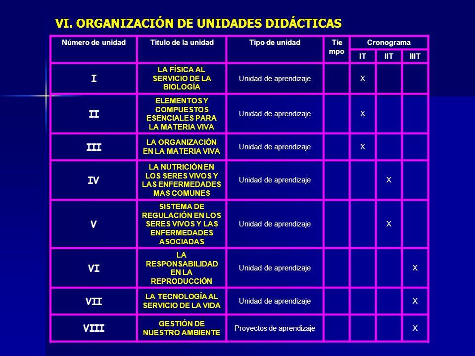 VI. ORGANIZACIÓN DE UNIDADES DIDÁCTICAS