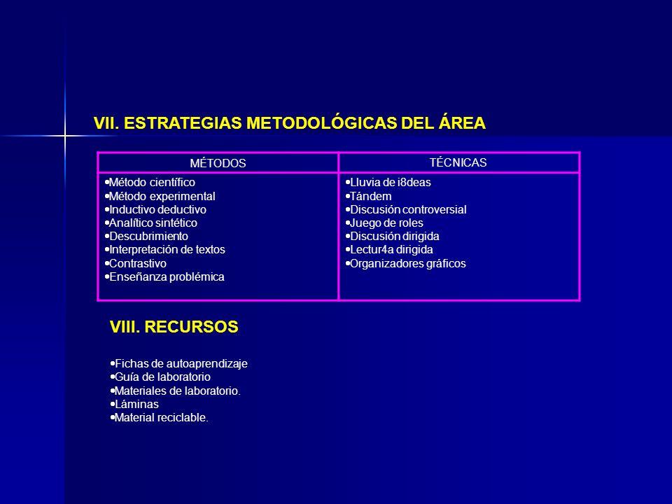 VII. ESTRATEGIAS METODOLÓGICAS DEL ÁREA