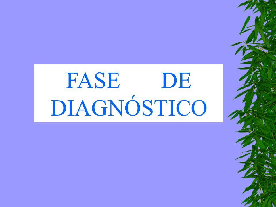 FASE DE DIAGNÓSTICO