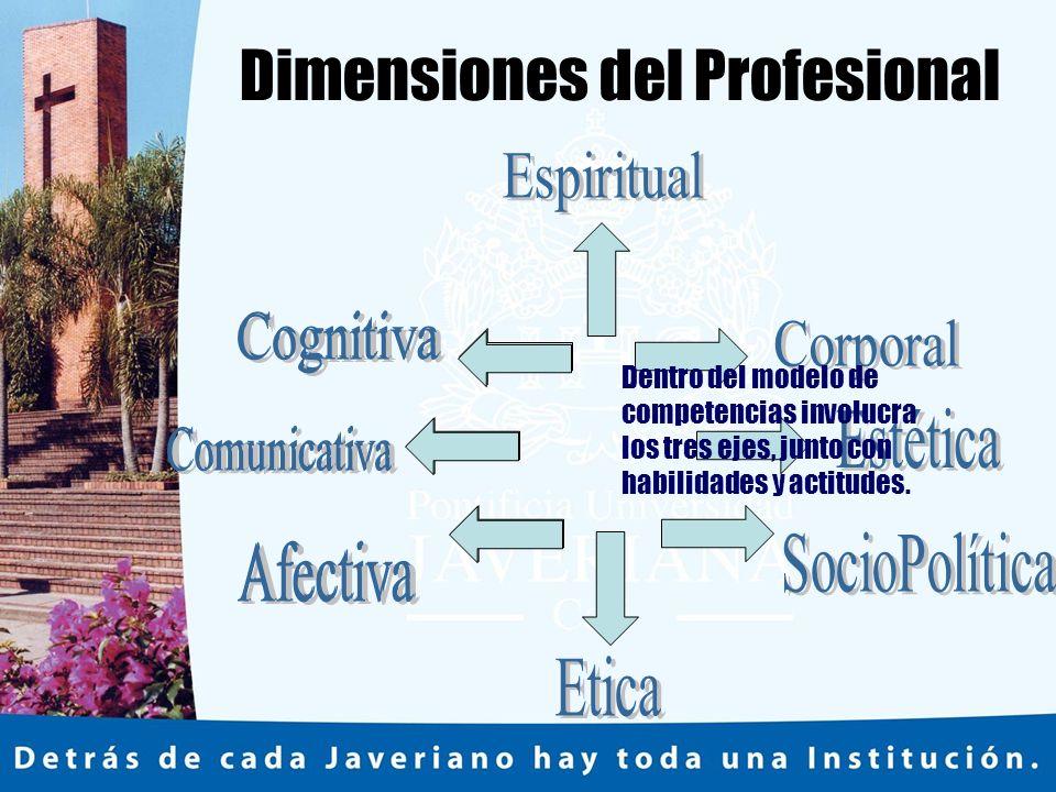 Dimensiones del Profesional