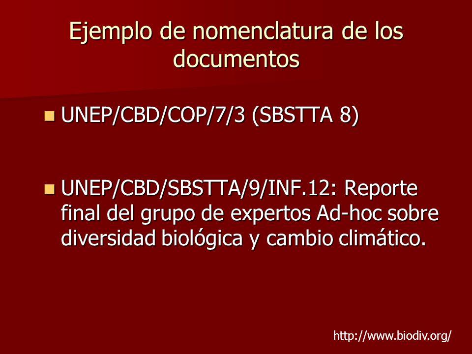 Ejemplo de nomenclatura de los documentos