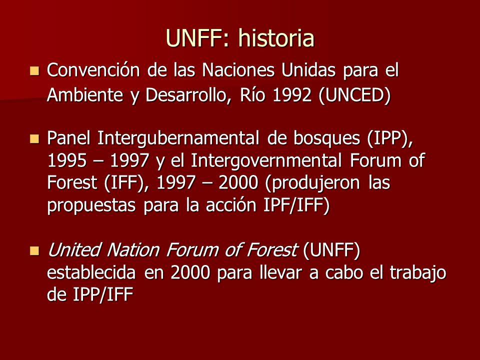 UNFF: historia Convención de las Naciones Unidas para el Ambiente y Desarrollo, Río 1992 (UNCED)