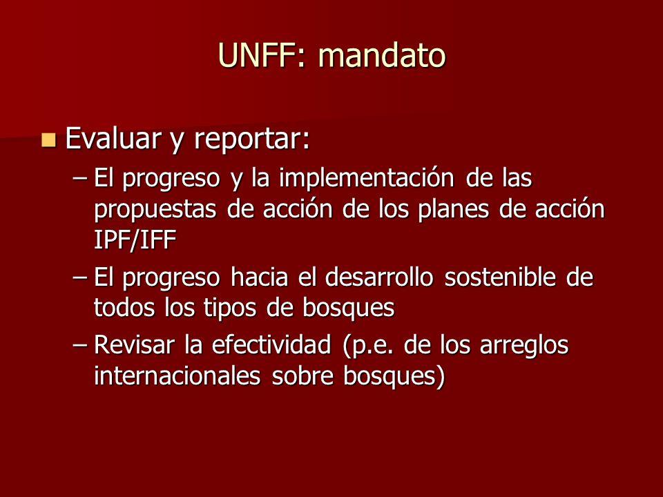 UNFF: mandato Evaluar y reportar:
