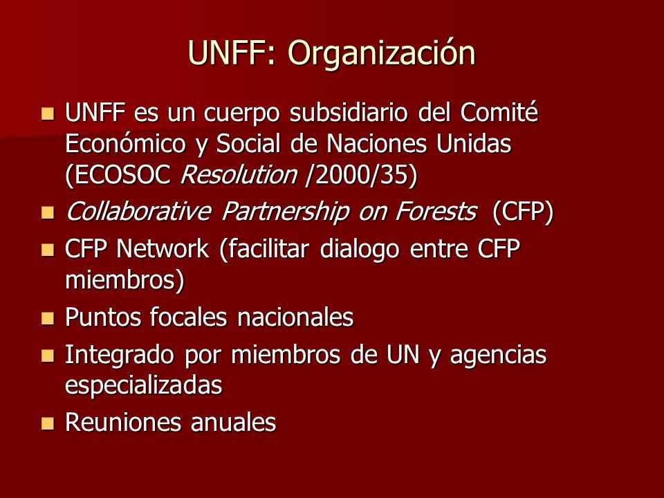 UNFF: Organización UNFF es un cuerpo subsidiario del Comité Económico y Social de Naciones Unidas (ECOSOC Resolution /2000/35)