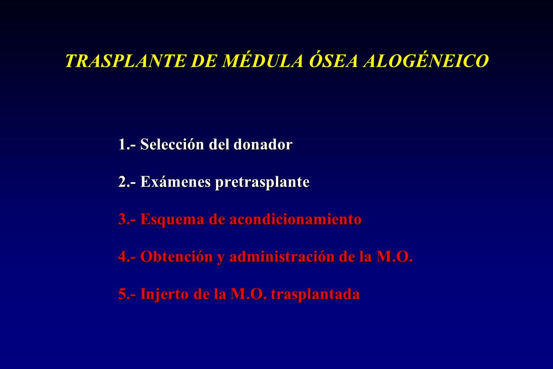 TRASPLANTE DE MÉDULA ÓSEA ALOGÉNEICO