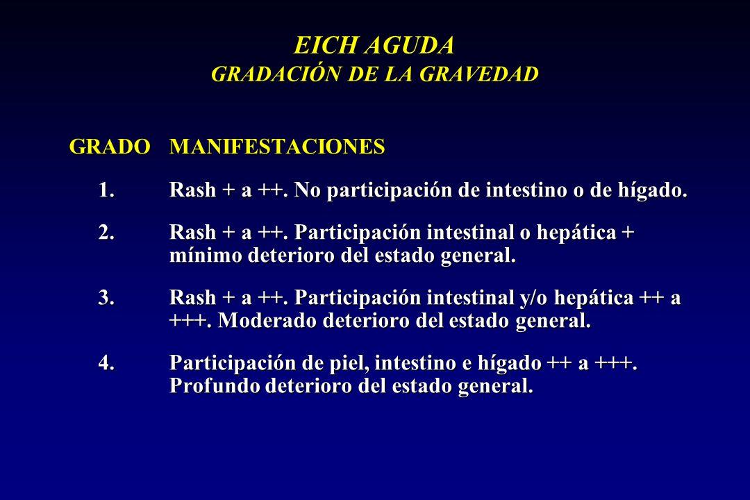 EICH AGUDA GRADACIÓN DE LA GRAVEDAD
