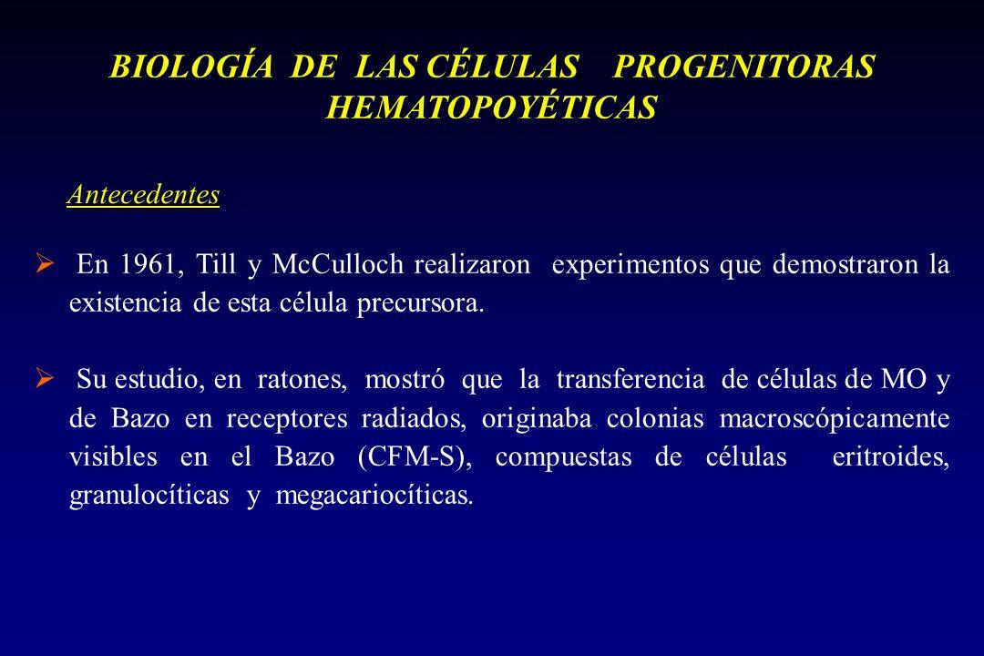 BIOLOGÍA DE LAS CÉLULAS PROGENITORAS HEMATOPOYÉTICAS