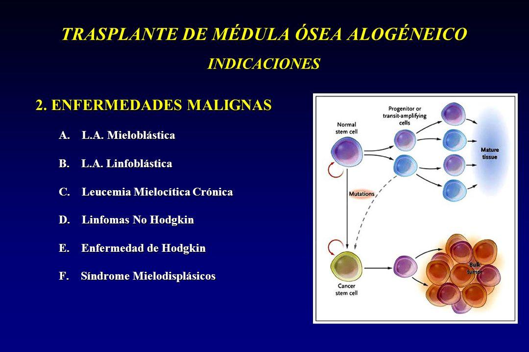 TRASPLANTE DE MÉDULA ÓSEA ALOGÉNEICO INDICACIONES